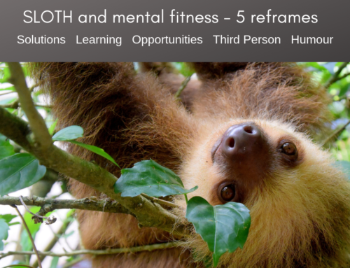 How to use a SLOTH to build your resilience and mental fitness